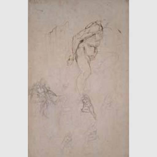 fino al 21.II.2010 Michelangelo Roma, Musei Capitolini