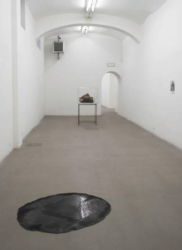 Fino al 18.VII.2014 The registry of promise: The promise of Melancholy and Ecology Fondazione Giuliani, Roma