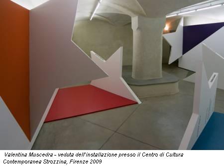 Valentina Muscedra - veduta dell'installazione presso il Centro di Cultura Contemporanea Strozzina, Firenze 2009