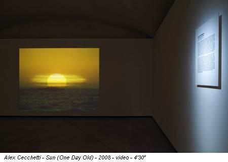 """Alex Cecchetti - Sun (One Day Old) - 2008 - video - 4'30"""""""