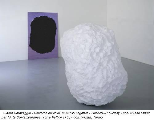 Gianni Caravaggio - Universo positivo, universo negativo - 2002-04 - courtesy Tucci Russo Studio per l'Arte Contemporanea, Torre Pellice (TO) - coll. privata, Torino