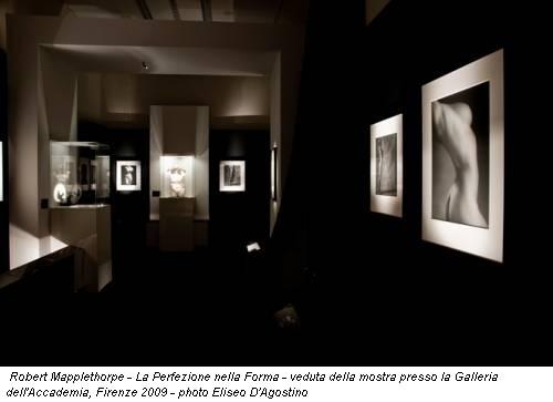 Robert Mapplethorpe - La Perfezione nella Forma - veduta della mostra presso la Galleria dell'Accademia, Firenze 2009 - photo Eliseo D'Agostino