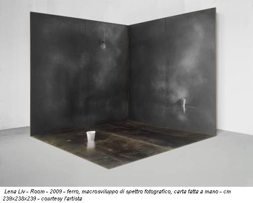 Lena Liv - Room - 2009 - ferro, macrosviluppo di spettro fotografico, carta fatta a mano - cm 239x238x239 - courtesy l'artista