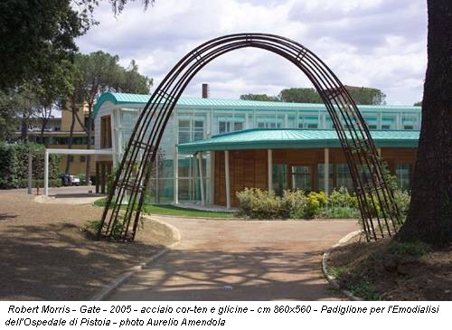 Robert Morris - Gate - 2005 - acciaio cor-ten e glicine - cm 860x560 - Padiglione per l'Emodialisi dell'Ospedale di Pistoia - photo Aurelio Amendola