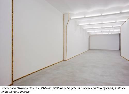 Francesco Carone - Golem - 2010 - architettura della galleria e noci - courtesy SpazioA, Pistoia - photo Serge Domingie