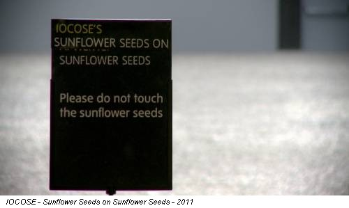 IOCOSE - Sunflower Seeds on Sunflower Seeds - 2011