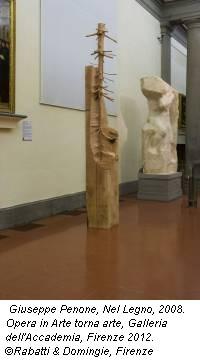 Giuseppe Penone, Nel Legno, 2008. Opera in Arte torna arte, Galleria dell'Accademia, Firenze 2012. ©Rabatti & Domingie, Firenze