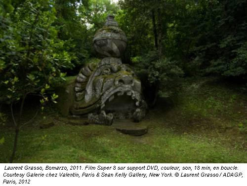 Laurent Grasso, Bomarzo, 2011. Film Super 8 sur support DVD, couleur, son, 18 min, en boucle. Courtesy Galerie chez Valentin, Paris & Sean Kelly Gallery, New York. © Laurent Grasso / ADAGP, Paris, 2012