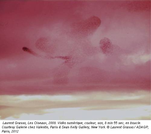 Laurent Grasso, Les Oiseaux, 2008. Vidéo numérique, couleur, son, 8 min 55 sec, en boucle. Courtesy Galerie chez Valentin, Paris & Sean Kelly Gallery, New York. © Laurent Grasso / ADAGP, Paris, 2012