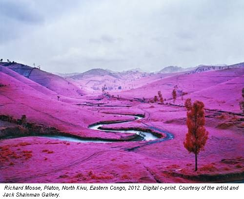Richard Mosse, Platon, North Kivu, Eastern Congo, 2012. Digital c-print. Courtesy of the artist and Jack Shainman Gallery.