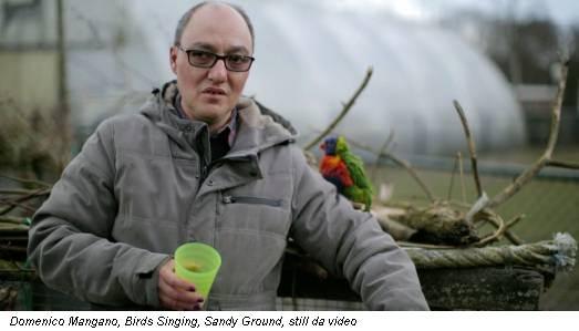 Domenico Mangano, Birds Singing, Sandy Ground, still da video