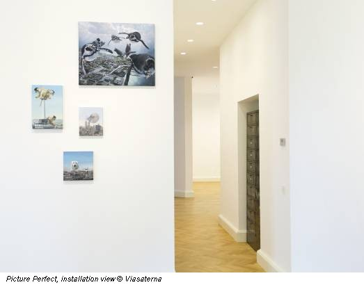 Picture Perfect, installation view © Viasaterna