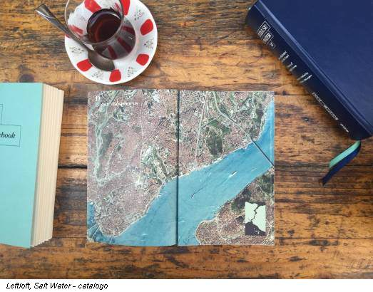 Leftloft, Salt Water - catalogo