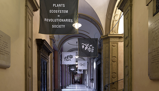 Finissage - Andreco, The Plants Are Revolutionaries - Museo Di Palazzo Poggi, Bologna