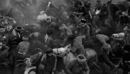Matrimonio Tra Uomo E Animale : Verona fieracavalli apre all arte contemporanea indagando
