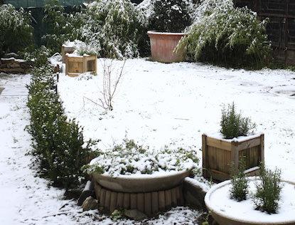Prato giardino d inverno eccolatoscana - Giardino d inverno costo ...