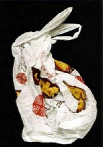 fino al 27.XI.2005   Din Matamoro – Immagini mentali   La Spezia, CAMeC