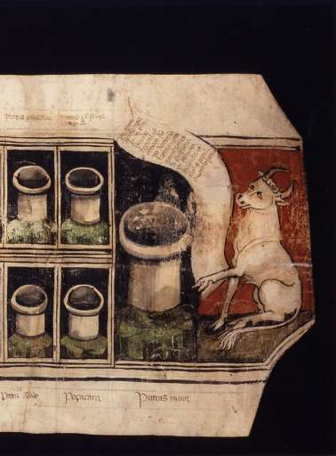 fino al 14.I.2007 | Vivere il Medioevo | Parma, Palazzo della Pilotta