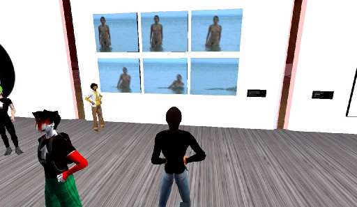 second_life | Unlocked | Shift Gallery, Second Life / Indire