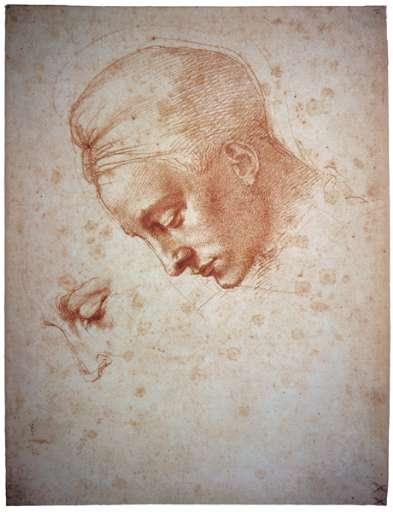 fino al 2.IX. 2007 | Michelangelo e il mito di Leda | Torino, Palazzo Bricherasio
