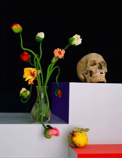 fino al 4.IV.2009 | Shirana Shahbazi | Milano, Cardi Black Box