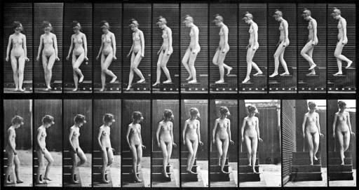 libri_anticipazioni | I futuristi: contro la fotografia? | (bollati boringhieri 2009)