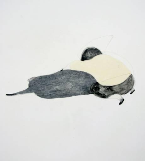 fino al 26.VII.2010 | Codice Sorgente | Torino, Fusion Gallery