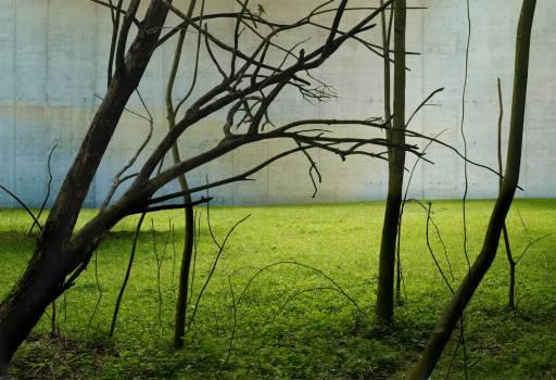 fino al 30.X.2010 | Gioberto Noro | Torino, Alberto Peola