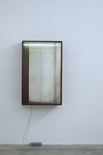 Fino al 10.V.2014 | Laurent Montaron, Everything we see could be something else | Monitor, Roma