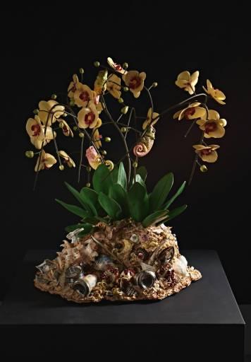 fino al 23.XII.2011 | Bertozzi & Casoni | Verona, FaMa Gallery