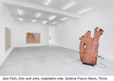 Sam Falls, Sine sole sileo, installation view Galleria Franco Noero Torino