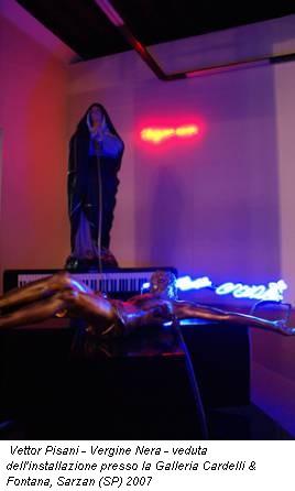 Vettor Pisani - Vergine Nera - veduta dell'installazione presso la Galleria Cardelli & Fontana, Sarzan (SP) 2007