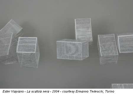 Ester Viapiano - La scatola nera - 2004 - courtesy Ermanno Tedeschi, Torino