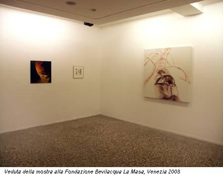 Veduta della mostra alla Fondazione Bevilacqua La Masa, Venezia 2008