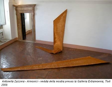 Antonella Zazzera - Armonici - veduta della mostra presso la Galleria Extramoenia, Todi 2008