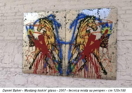 Daniel Baker - Mustang lookin' glass - 2007 - tecnica mista su perspex - cm 120x180