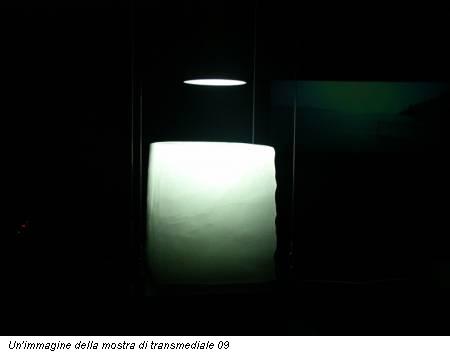 Un'immagine della mostra di transmediale 09