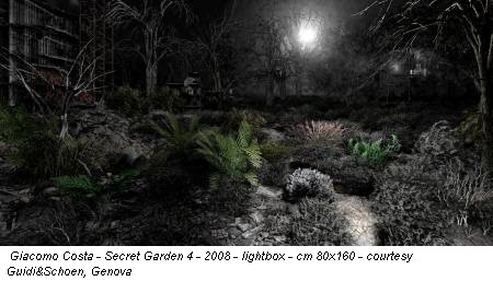 Giacomo Costa - Secret Garden 4 - 2008 - lightbox - cm 80x160 - courtesy Guidi&Schoen, Genova