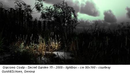Giacomo Costa - Secret Garden 15 - 2008 - lightbox - cm 80x160 - courtesy Guidi&Schoen, Genova