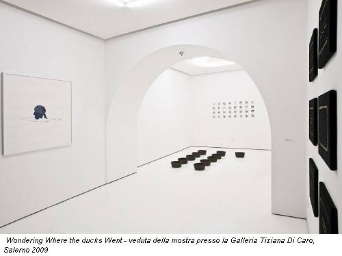 Wondering Where the ducks Went - veduta della mostra presso la Galleria Tiziana Di Caro, Salerno 2009