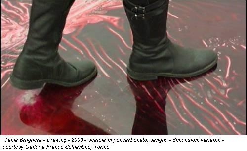 Tania Bruguera - Drawing - 2009 - scatola in policarbonato, sangue - dimensioni variabili - courtesy Galleria Franco Soffiantino, Torino