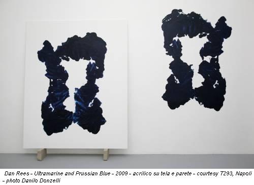 Dan Rees - Ultramarine and Prussian Blue - 2009 - acrilico su tela e parete - courtesy T293, Napoli - photo Danilo Donzelli