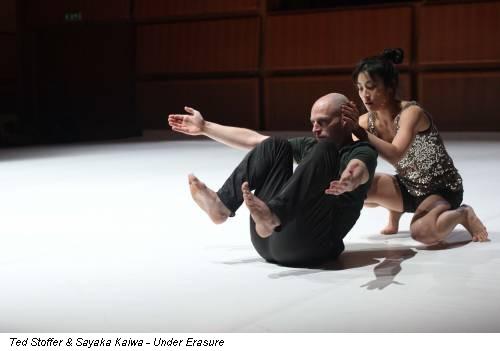 Ted Stoffer & Sayaka Kaiwa - Under Erasure