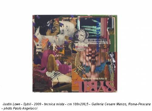 Justin Lowe - Sybil - 2009 - tecnica mista - cm 189x206,5 - Galleria Cesare Manzo, Roma-Pescara - photo Paolo Angelucci