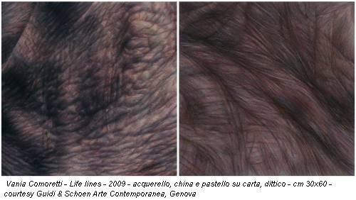 Vania Comoretti - Life lines - 2009 - acquerello, china e pastello su carta, dittico - cm 30x60 - courtesy Guidi & Schoen Arte Contemporanea, Genova