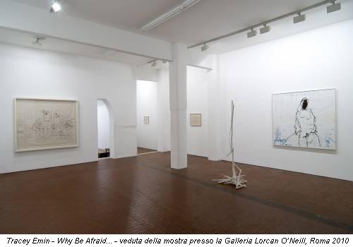 Tracey Emin - Why Be Afraid... - veduta della mostra presso la Galleria Lorcan O'Neill, Roma 2010