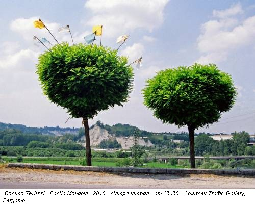 Cosimo Terlizzi - Bastia Mondovì - 2010 - stampa lambda - cm 35x50 - Courtsey Traffic Gallery, Bergamo