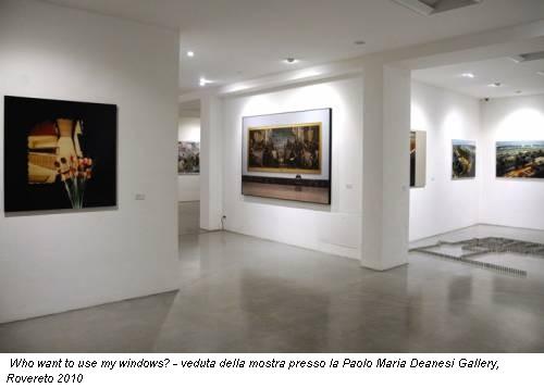 Who want to use my windows? - veduta della mostra presso la Paolo Maria Deanesi Gallery, Rovereto 2010