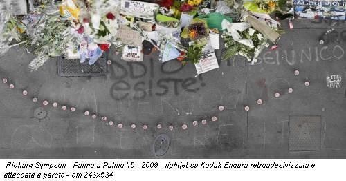 Richard Sympson - Palmo a Palmo #5 - 2009 - lightjet su Kodak Endura retroadesivizzata e attaccata a parete - cm 246x534