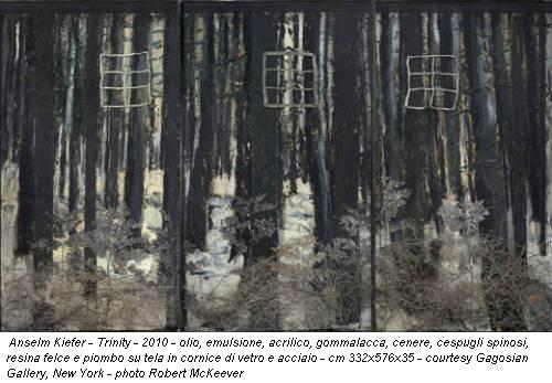 Anselm Kiefer - Trinity - 2010 - olio, emulsione, acrilico, gommalacca, cenere, cespugli spinosi, resina felce e piombo su tela in cornice di vetro e acciaio - cm 332x576x35 - courtesy Gagosian Gallery, New York - photo Robert McKeever
